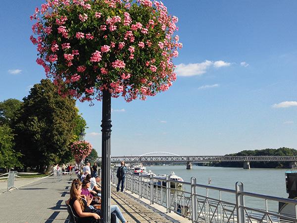 Viena principais atrações de uma cidade com cultura e romantismo