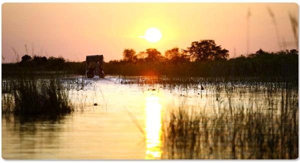 Viagem à Botswana: o espetáculo do Delta do Okavango