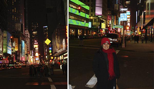 Nova York nas quatro estações: primavera, verão, outono e inverno