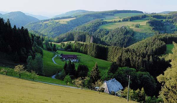 Lua de Mel na Alemanha Romântica: castelos e paisagens