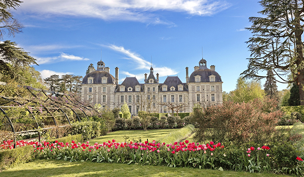 Castelo e flores na França