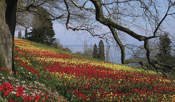 Alemanha na Primavera