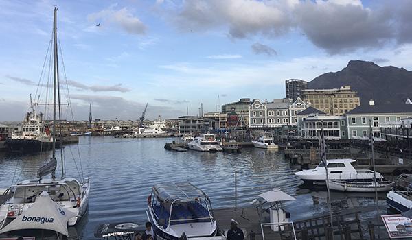 Cape Town: roteiro pela cidade mais bonita da África do Sul