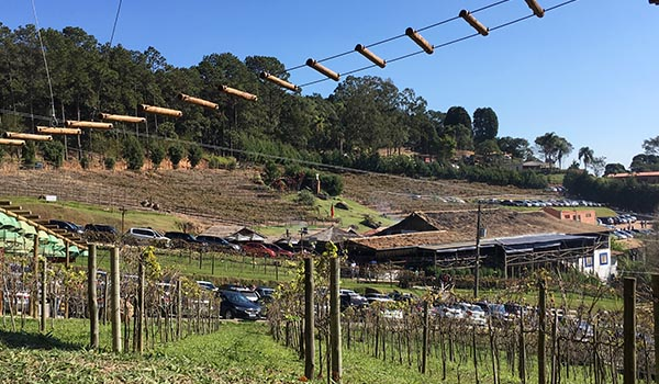 São Roque e a Estrada do Vinho: belas paisagens, degustações e atrações