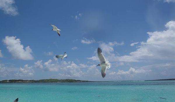 Bahamas onde ficar nas ilhas paradisíacas do Oceano Atlântico