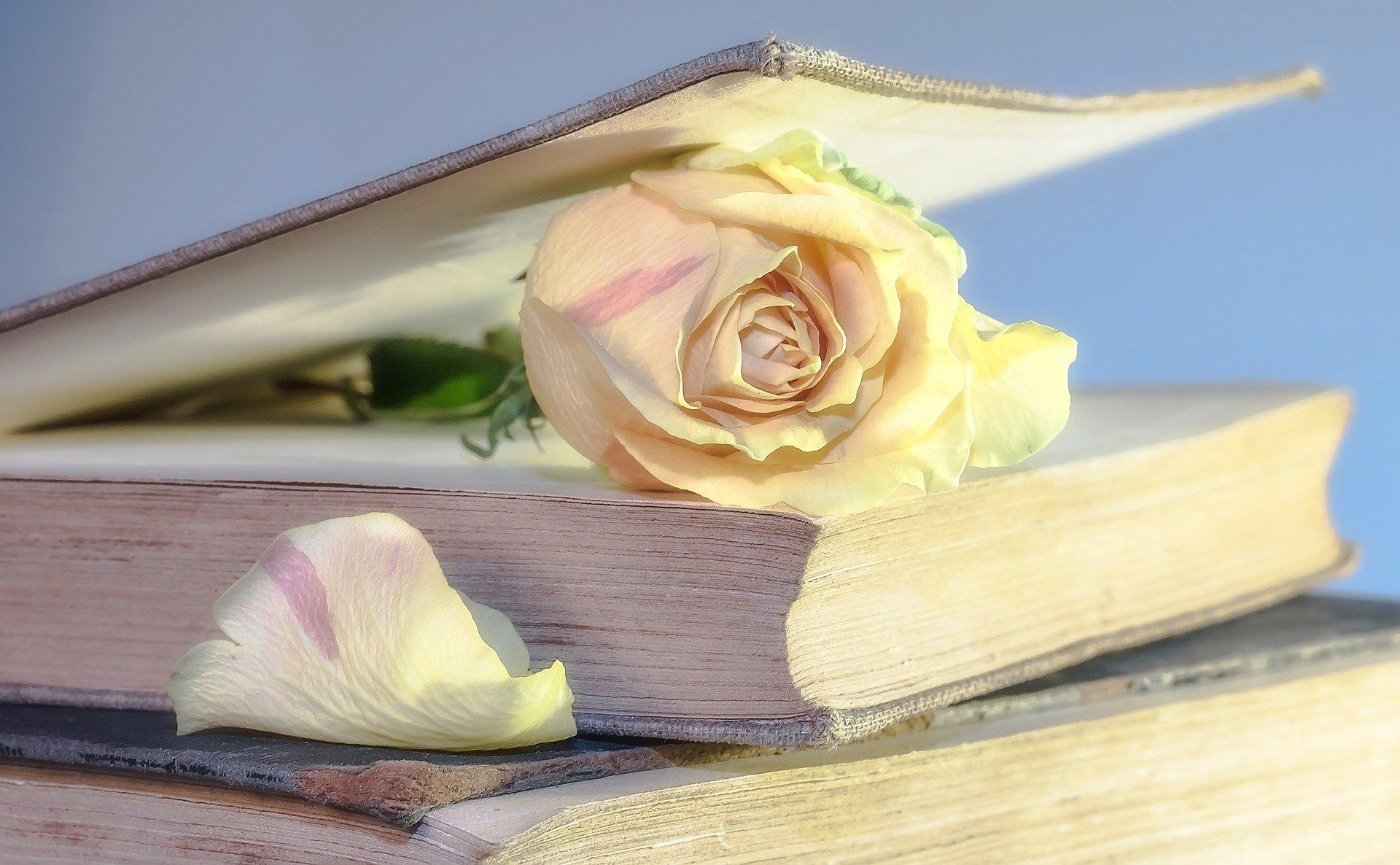 Livros para o bem-estar